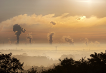 14 Advantages and Disadvantages of Carbon Tax