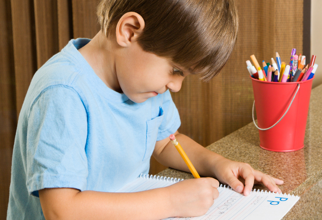 16 Public School vs Homeschool Pros and Cons
