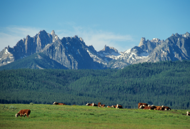 21 Pros and Cons of Living in Idaho