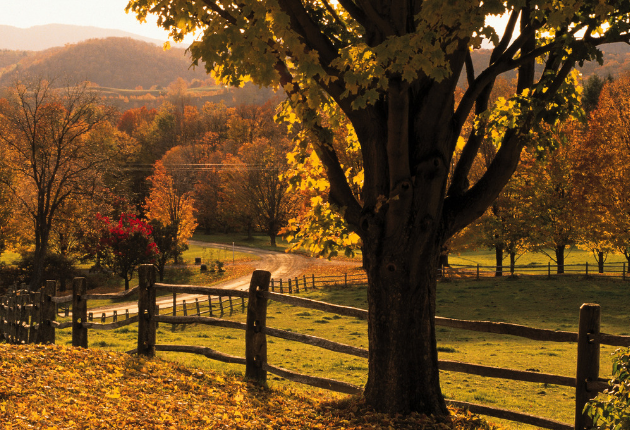 16 Pros and Cons of Living in Vermont