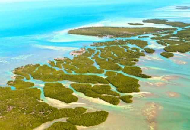 17 Pros and Cons of Living in the Florida Keys